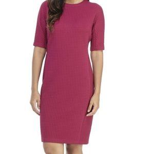 Maggy London Katie Sheath Dress SZ 4 NWT